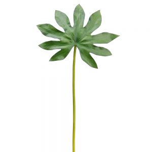 """19.25"""" Baby Aralia Leaf Spray Green"""