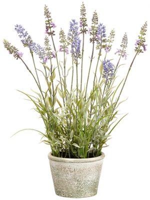 "15.5"" Lavender in Paper MachePotLavender"