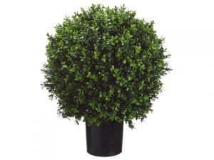 "23.5""H Ball-Shaped Boxwood Topiary in Plastic Pot Green"