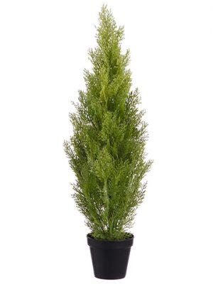 "36"" Cedar Topiary in PlasticPotLight Green"