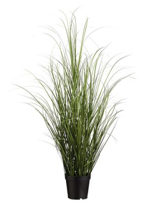 "39"" Grass Bush in Pot Two Tone Green"