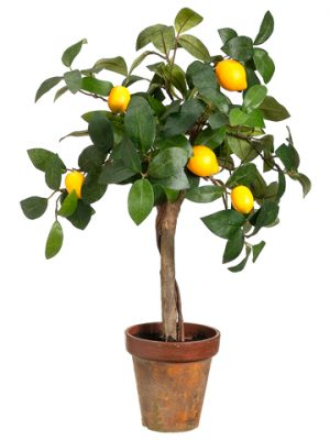 "22"" Young Lemon Topiary in Paper Mache Pot Yellow"