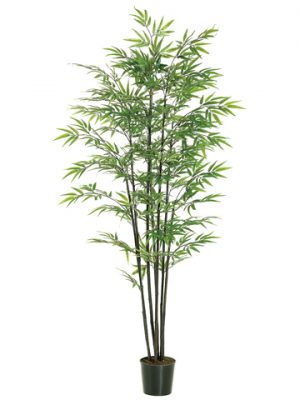 6' Black Bamboo Tree x7 with 1440 Leaves in Black Plastic Pot Green