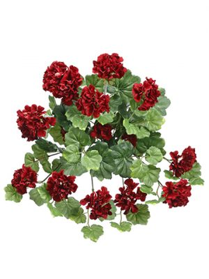 "17.5"" Geranium Hanging Bush Red"
