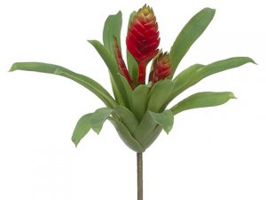 "12"" Tillandsia Bush Red"