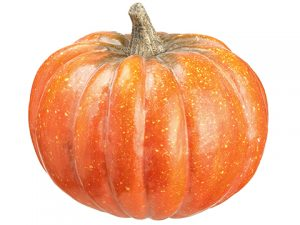 "10""H x 11""D Pumpkin Orange Green"