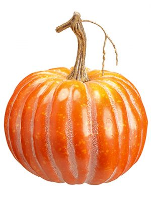 "6""H x 5.5""D Pumpkin Orange"