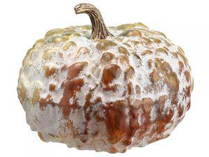 """6.5""""H x 7.5""""D Pumpkin Butterscotch Green"""