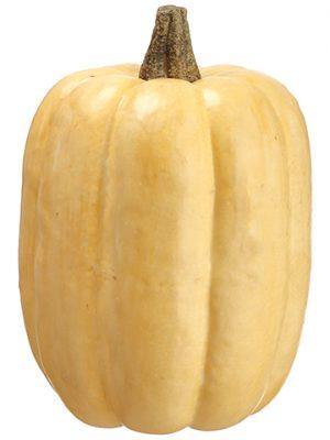 """11""""H x 7.5""""D Pumpkin Butterscotch"""