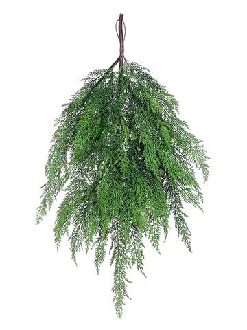 "36"" Cedar Teardrop Green"